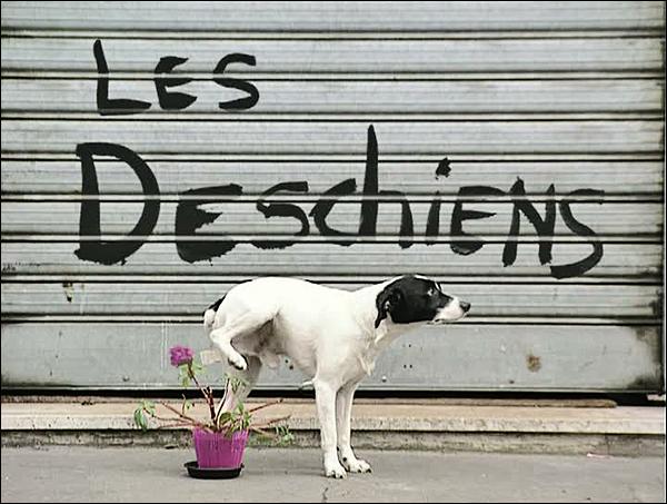 Série TV – Les Deschiens – Série Classique (1993-96)